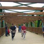 pasarelas de madera